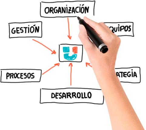 Organització, gestió, processos, desenvolupament, estrategia, equips